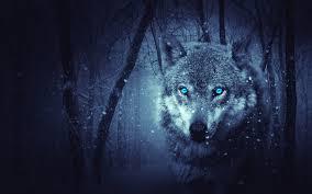 Download Wallpaper 3840x2400 Wolf Predator Photoshop Art