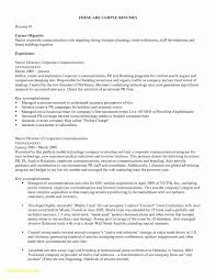 Resume Career Objective Sample How To Write A Career Objective 15