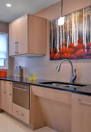 Universal Design Kitchen Cabinets Ada Accessibility Universal Kitchen Design New York