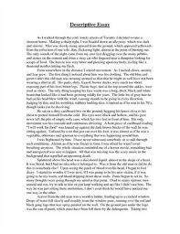 help a descriptive essay thesis descriptive essay on the beach example