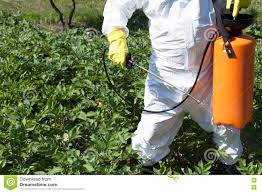 garden insecticide. Organic Gardening:Mice Exterminator Rodent Control Pest Products Insecticide For Garden Safe N