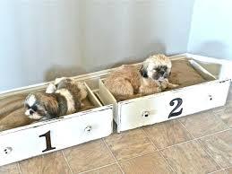 diy dog bed diy pallet dog bed plans
