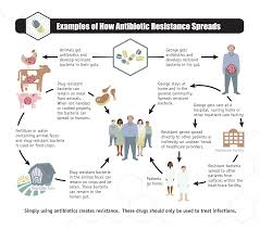 antibiotic resistance medlineplus examples of how antibiotic resistance spreads infographic