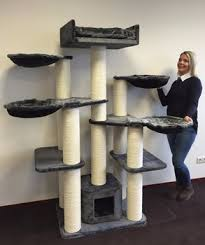 where to buy cat furniture.  Cat RHRQuality Cat Tree For Large Cat Maine Coon Fantasy Grey Plus  Furniture Scratcher House And Where To Buy K