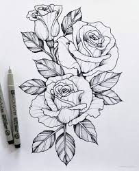 Picture Drawings 45 Beautiful Flower Drawings And Realistic Color Pencil Drawings