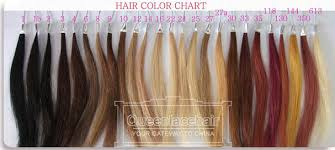 Color Chart For Hair Weaves And Hair Extensions Human Hair