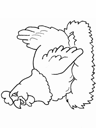 Small Picture Hen Coloring Pages Coloring Home