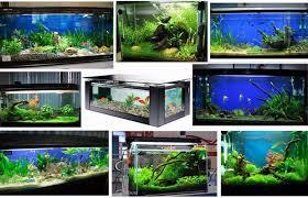 fish tank led lighting uk lilianduval