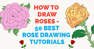 how to draw a rose 50 best rose drawing tutorials