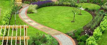 garden lawn ideas lawn care ideas
