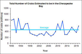 Md Crab Size Chart Chesapeake Bay Crab Population Highest Since 2012
