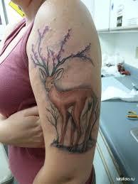 тату олень на плече и руке у девушки Tatufotocom