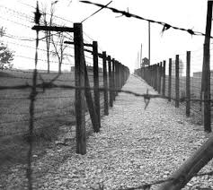 barbed wire fence holocaust. Brilliant Holocaust A Guard Tower And Barbed Wire Fences Majdanek Poland 1973  For Fence Holocaust A