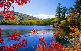 Nature wallpaper HD Landscape ...