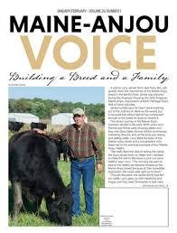 Maine Anjou Voice January February Issue 2019 By Edje Issuu
