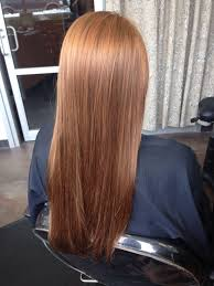 Light Copper Brown Hair Color Pin By Michelle Beard On Hair In 2019 Golden Copper Hair