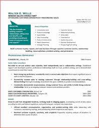 Free Sample Resume For Customer Service Inspirational Brilliant