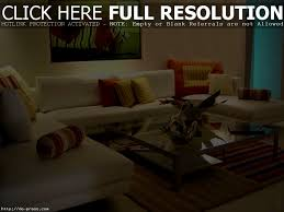 Small Picture Apartments Delightful Home Decorating Ideas Creating The White