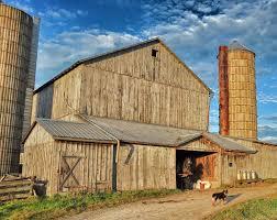 Who left the Barn door open, - Steve's Digicams Forums