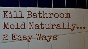 how to get rid of bathroom mold naturally 2 ways to kill bathroom mold you