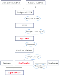 Differential Identification Chart Flow Chart For Identification Of Ego Genes Modules And