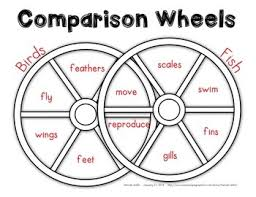 Comparison Venn Diagram Comparison Wheels A Venn Diagram Worksheet