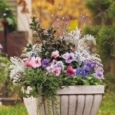 Garden Design Garden Design With Plants For Pots Ideas Pots Plus Container Garden Ideas For Winter