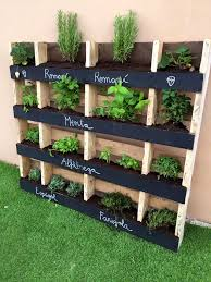 25 Best Ideas About Free Wooden Pallets On Pinterest Pallet Photo Details -  From these photo