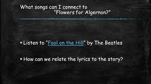 flowers for algernon theme flowers for algernon themes symbols and  flowers for algernon art projects the best flowers ideas flowers for algernon soundtrack project the best