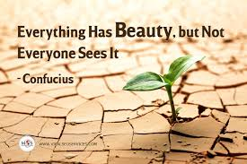 Confucius Beauty Quote Best Of Everything Has Beauty But Not Everyone Sees It Quote By Confucius
