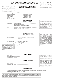 Alluring Good Looking Resume Examples In Some Example Of Resume