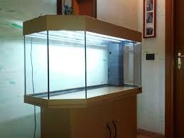 Il mio nuovo acquario juwel [archivio] acquaportal forum