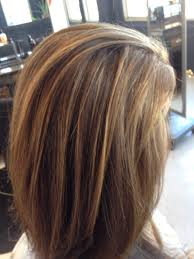 Light Brown With Caramel Highlights Light Brown Hair With Caramel Highlights I Love Brown Hair