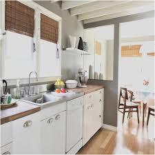Cabinet Shocking Slab Cabinet Doors Photos Design Kitchen Mid