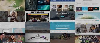 Image result for premium wordpress themes