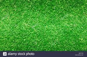green grass football field. Football Field Green Grass Pattern Textured Background