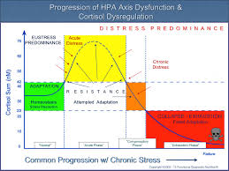 Hpa Axis Progression Of Hpa Axis Dysfunction And Cortisol Dysregulation