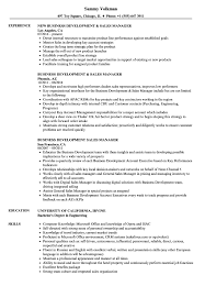 Director Of Development Resumes 012 Business Development Sales Manager Resume Sample