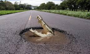 """На ремонт 24 тыс. км основных магистралей потребуется около 300 млрд грн, - глава """"Укравтодора"""" Новак - Цензор.НЕТ 7509"""