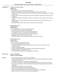 Download SEO Consultant Resume Sample as Image file