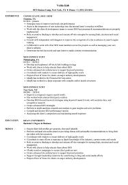 Seo Resume Examples SEO Consultant Resume Samples Velvet Jobs 8