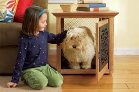 furniture denhaus wood dog crates. Wonderful Furniture Small Wooden Dog Crate Plans For Furniture Denhaus Wood Crates