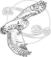 Small Picture Snowy Owl coloring page