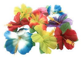 hibiscus flowers amazon com oojami hibiscus flowers for tabletop decoration toys