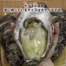 能登 牡蠣