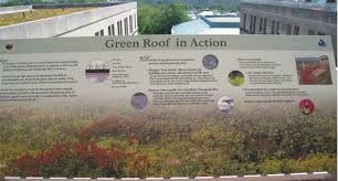green roof benefits technical