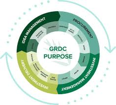 Process Steps Steps In The Investment Process Grdc