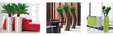 great office plants. best indoor office plants green pinterest great v