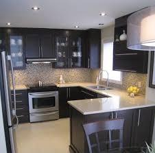modern kitchen design ideas. Modern Kitchen Design Idea With Simple Backsplash And Elegant Cabinet Ideas W