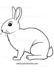 Disegni Di Conigli Da Colorare E Stampare Disegno Di Bing Il